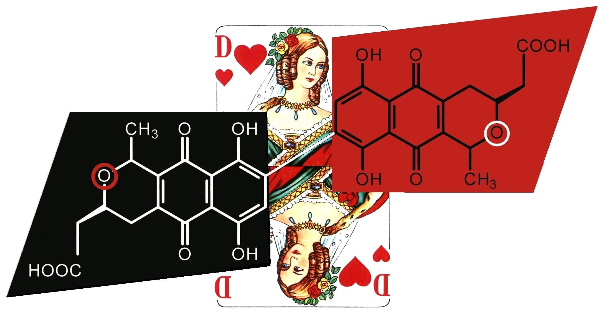 Actinorhodin