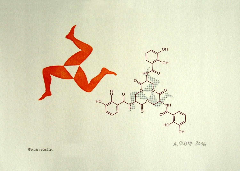Enterobactin