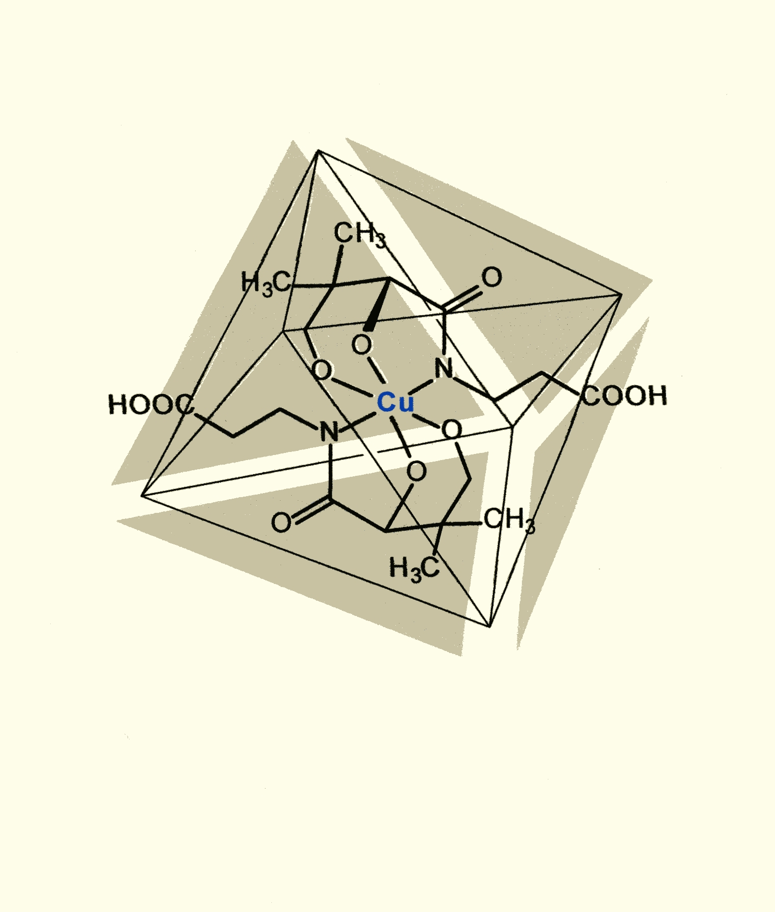 Dexpanthenol-Kupferchelat