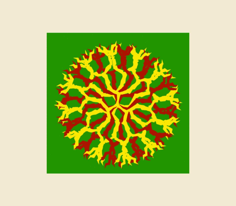 Dendrimer D08