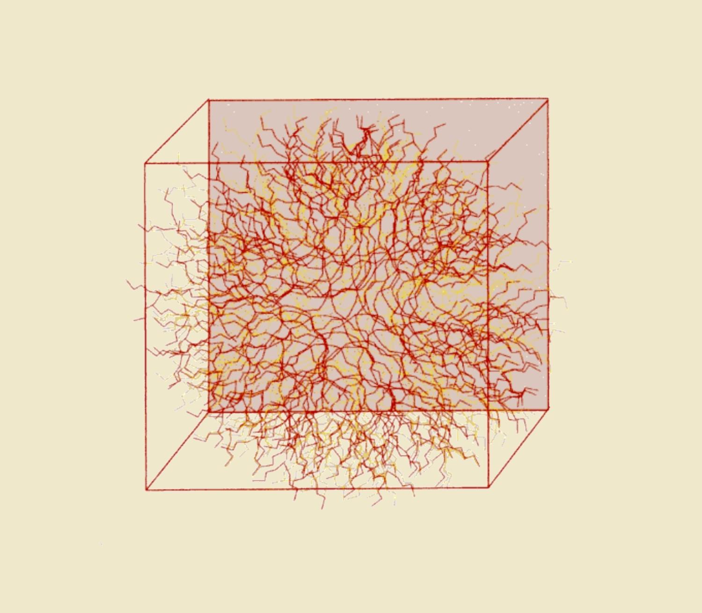 Neuronales Netzwerk D16