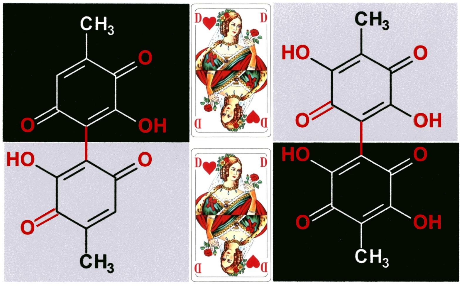 Phoenicin und Oosporein